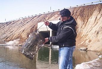 İş makinelerinin filtrelerinden balık tutma tuzağı